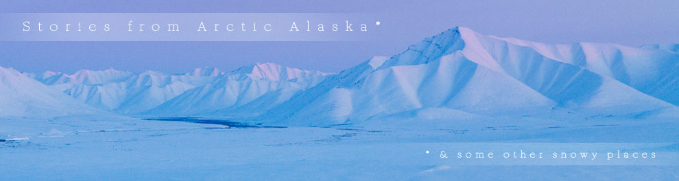 Arctic Stories logo